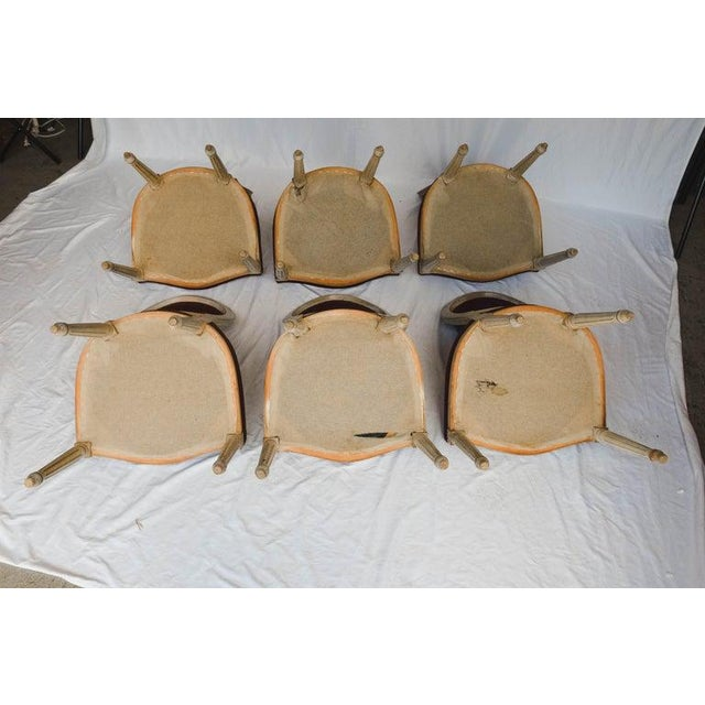 Set of 6 French Chairs For Sale - Image 11 of 13