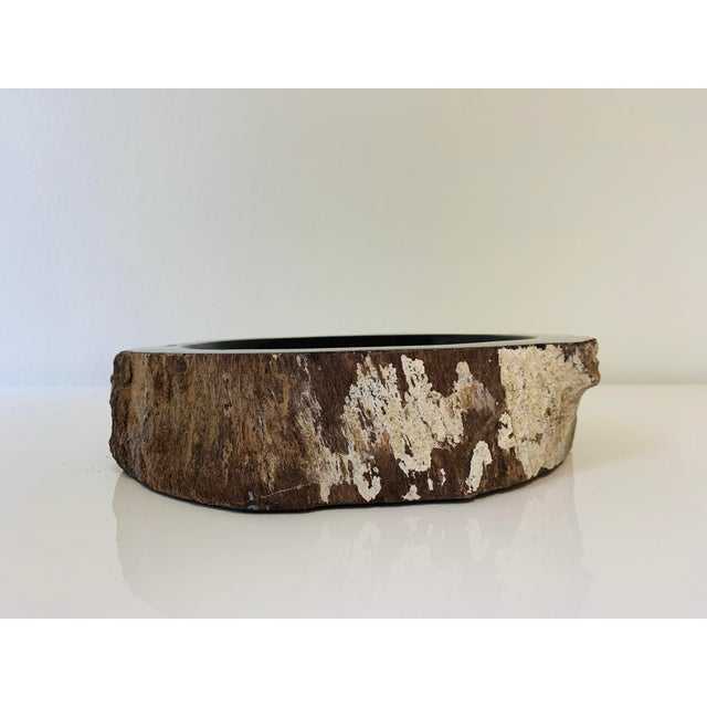 This petrified wood bowl is a one-of-a-kind piece. This bowl is a great catchall for jewelry, keys, paperclips, coins and...