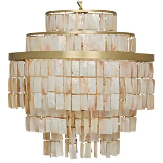 Brass & Shell Winoda Chandelier For Sale