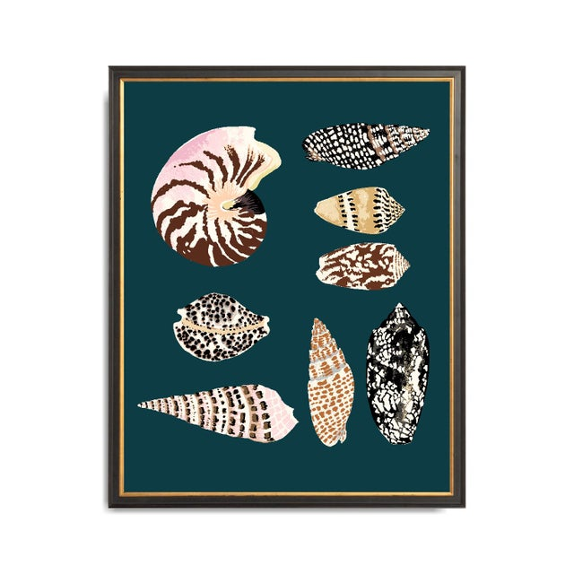 """""""Fiji Shells in Teal"""" Contemporary Giclee Print by Sarah Gordon For Sale - Image 4 of 4"""