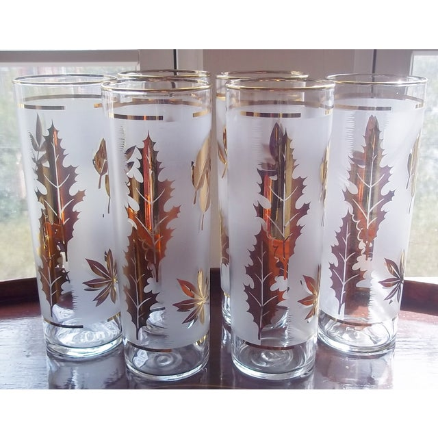 Set of six 1960s Tom Collins or iced-tea glasses. The glasses are frosted and decorated with gold leaf leaves and trim. No...