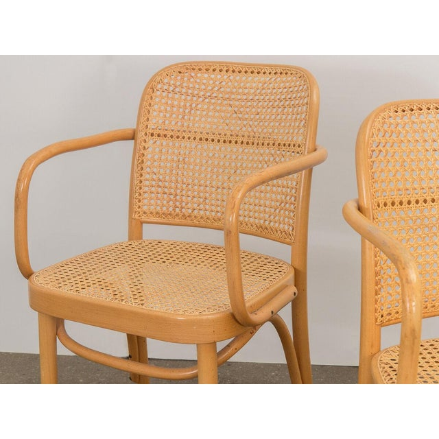Joseph Hoffman Bentwood Chairs - Set of 8 For Sale In New York - Image 6 of 11