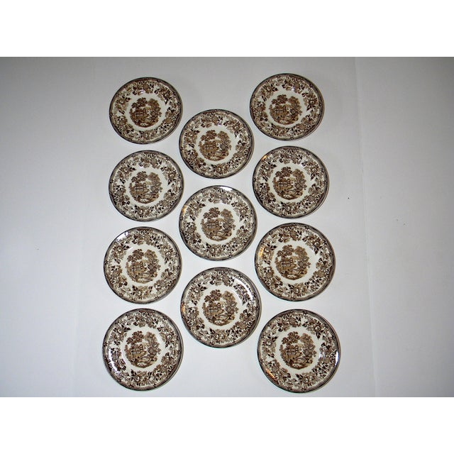 Early 20th Century Early 20th Century Antique Royal Staffordshire Bread & Butter Plates - Set of 11 For Sale - Image 5 of 5