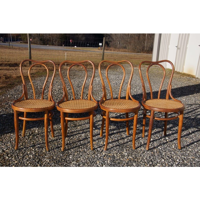 Mid-Century Modern 1940s Antique Thonet-Style Bentwood Heavy Cane Woven Seat Parlor Bistro Chairs - Set of 4 For Sale - Image 3 of 13