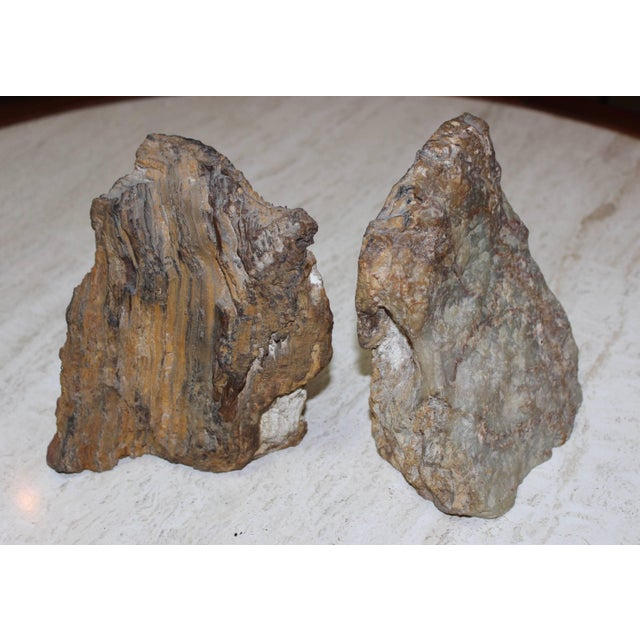 Wood Petrified Wood Bookends For Sale - Image 7 of 8