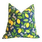 Blueberry Lemonade Outdoor Pillow Cover 18x18