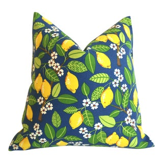 Blueberry Lemonade Outdoor Pillow Cover 18x18 For Sale