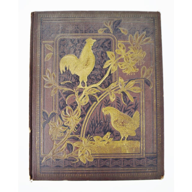 Antique Victorian Album Cover, Hen and Baby Chicks Design ...