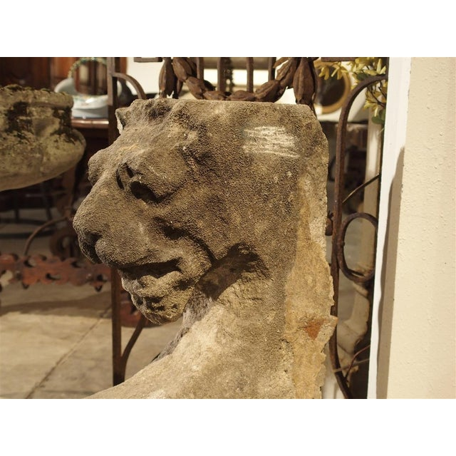 Beautiful Carved Limestone Lion Architectural, Burgundy France, 17th Century For Sale In Dallas - Image 6 of 11