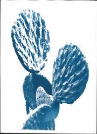 Image of Illustration Photography