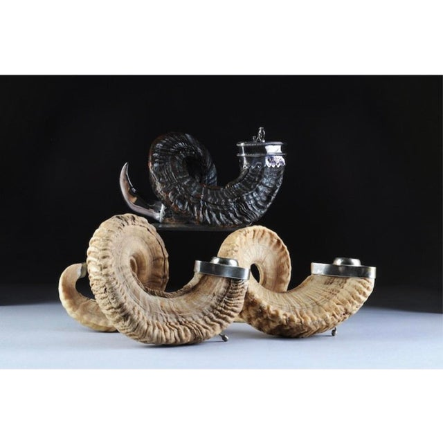 Ram's Horn Candle Holders - Set of 3 For Sale - Image 11 of 11