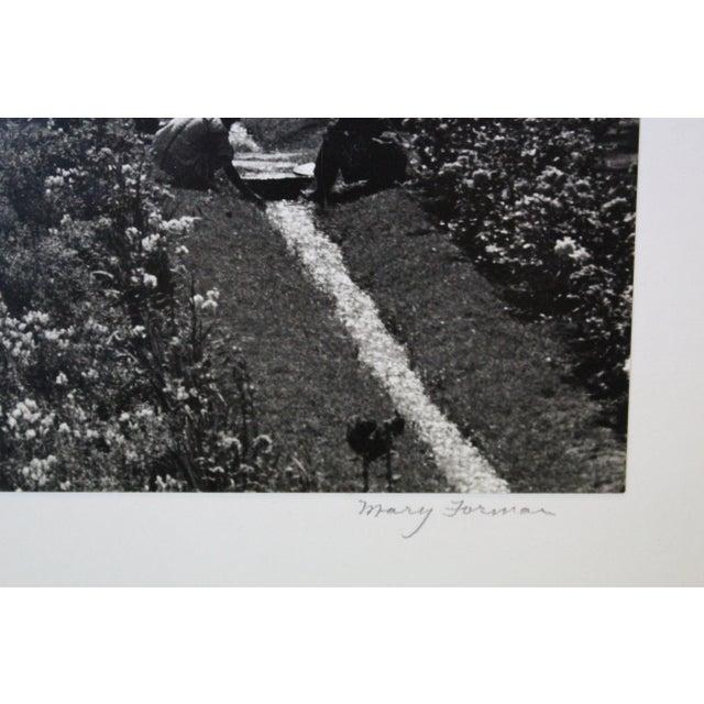 White Mughal Garden Kashmir Garden Photograph For Sale - Image 8 of 10