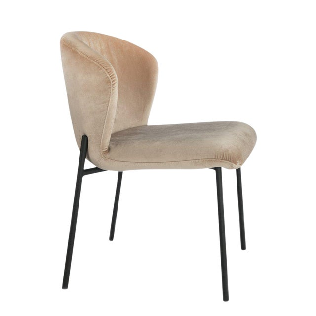 Contemporary Contemporary J Jamie Statements Latte Velvet Dining Chair For Sale - Image 3 of 3