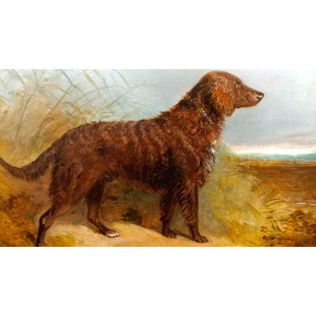 1853 Charles Bilger Spalding Irish Setter Original Oil Painting For Sale - Image 4 of 10