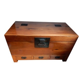 Late 19th Century Qing Dynasty Camphor Fur Chest For Sale