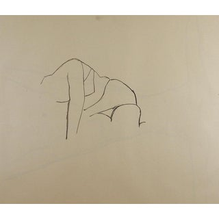 Line Drawing Womans Figure Study For Sale