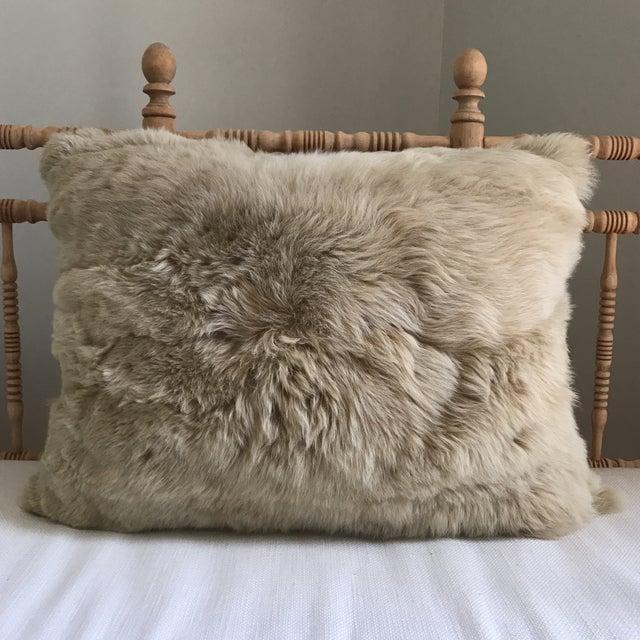 Peruvian Baby Alpaca Fur Pillow - Image 7 of 7
