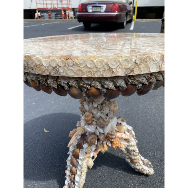 Shell Custom Shell Pedestal Side Table For Sale - Image 7 of 9