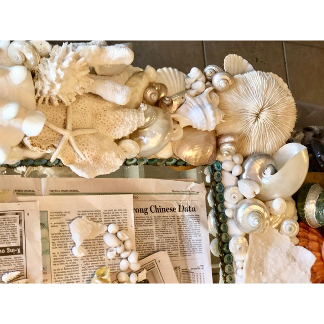 Large Horizontal Seashell & Coral Mirror For Sale - Image 4 of 10