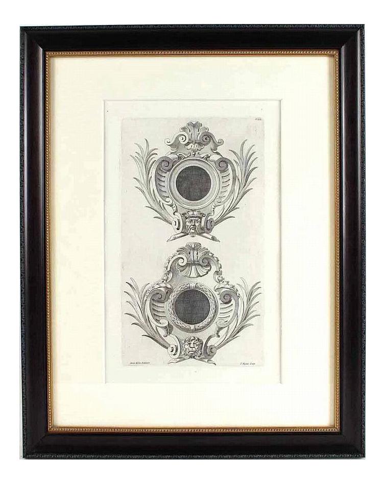 17th Century Italian Vintage Lacerta Indica Iuannae Congener P 667