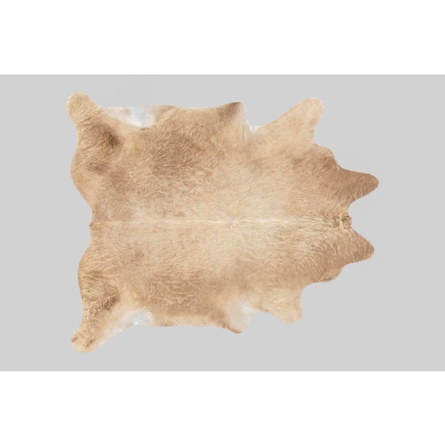 Contemporary Blonde Genuine Brazilian Cowhide For Sale - Image 3 of 3