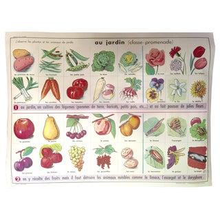 Vintage French Garden School Poster
