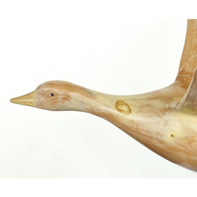Vintage Life-Size Carved Wood Duck /Goose Sculpture in Flight For Sale - Image 4 of 11