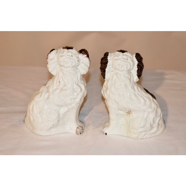 19th C Staffordshire Spaniels - a Pair For Sale - Image 4 of 6