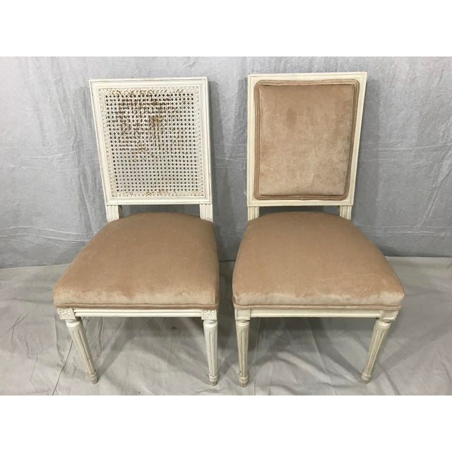 Louis XVI Style Dining Chairs Set of 8 For Sale - Image 4 of 9
