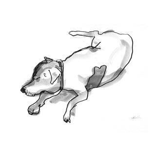 "Martha Holden ""Terrier Dog"" Ink Drawing"