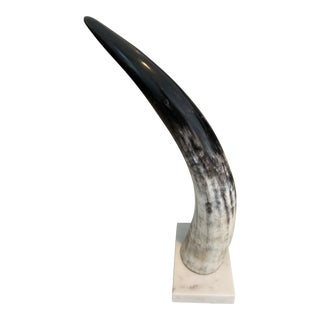 Contemporary Mounted Cattle Horn For Sale