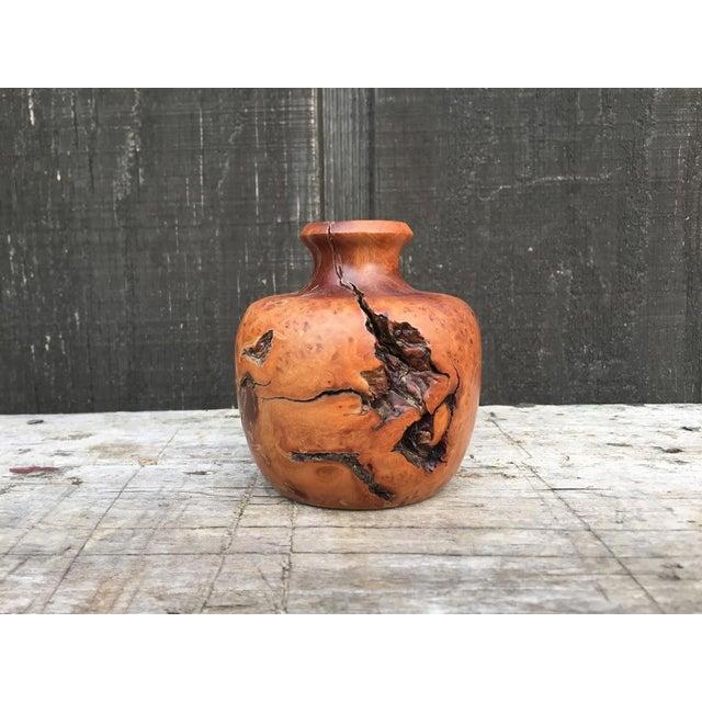Wood Burl Bud Vase For Sale - Image 10 of 10