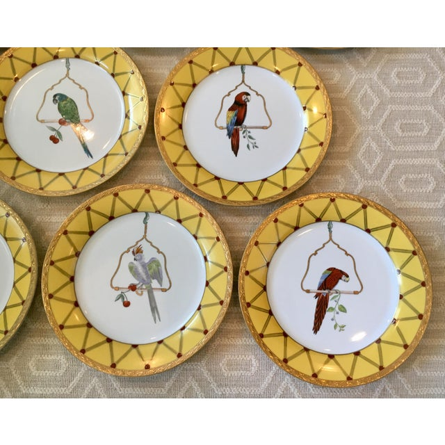 Chelsea House Decorative Tropical Bird Parrot Plates - Set of 8 For Sale In Dallas - Image 6 of 10
