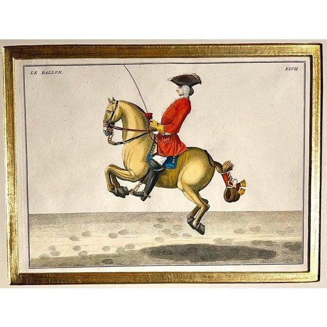Four Engravings of Horse Riders Le Sensible, Le Royal, Le Conquerant, Le Ballon For Sale - Image 9 of 11