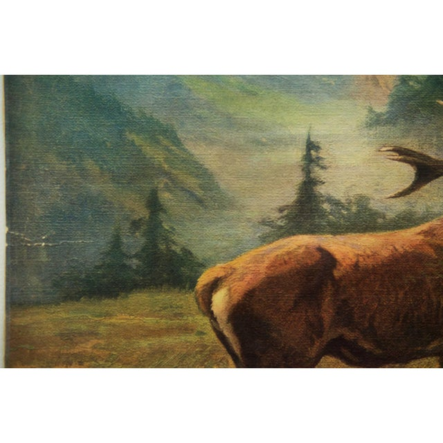 This vintage school poster depicts deer. It is signed Hans Schmid and was originally painted in the 1920s. This is...