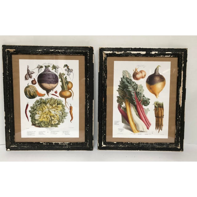 Vintage French Botanical Prints in Rustic Wood Frames - a Pair For Sale - Image 13 of 13