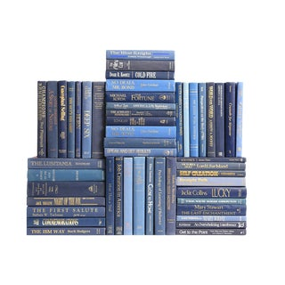 Retro Denim Book Wall : Set of Fifty Decorative Books in Shades of Blue