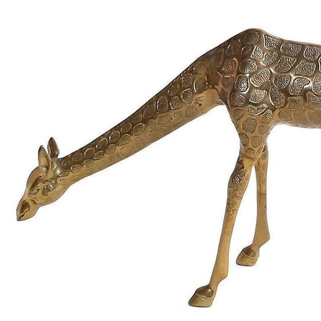 Vintage Cast Bronze Giraffe Medium Sized Sculpture For Sale In Houston - Image 6 of 7