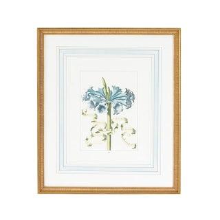 Botanical Floral With Ribbon 4 Framed Print For Sale