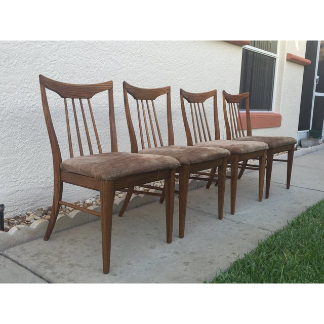 Mid Century Oak Dining Chairs - Set of 4 - Image 10 of 11