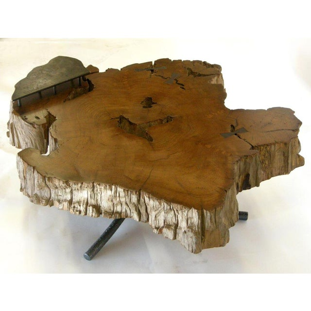 Black Freeform Teak Coffee Table With Hand Forged Iron Tripod Base For Sale - Image 8 of 11