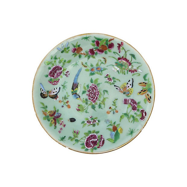 Cottage Antique Celadon Plate W/ Flowers For Sale - Image 3 of 3