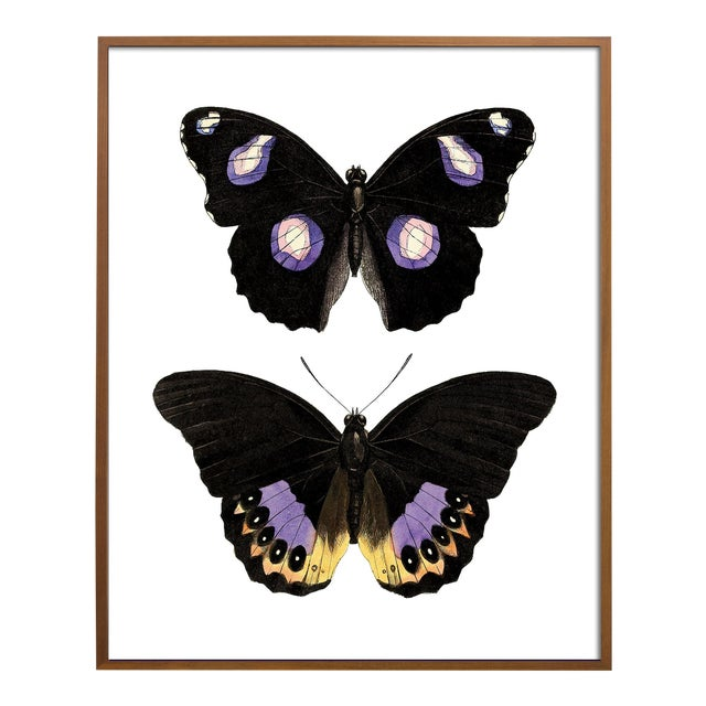 Carnaby Butterflies in Purple and Yellow Art For Sale