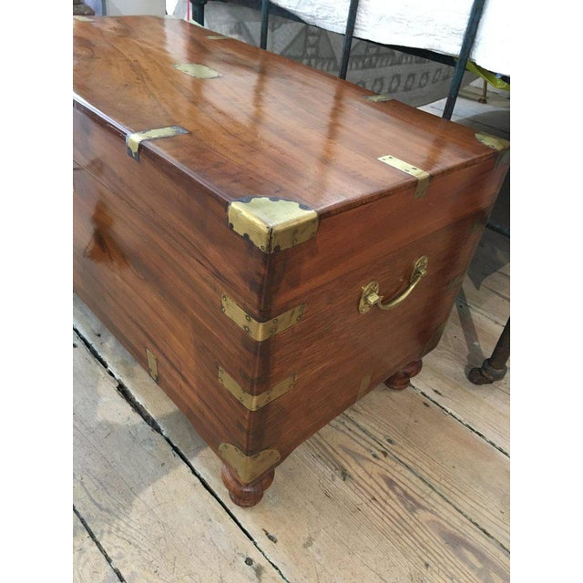 Late 19th Century Late 19th Century British Campaign Camphor Sea Chest For Sale - Image 5 of 8