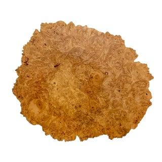 Vintage Slab of Burl Wood For Sale