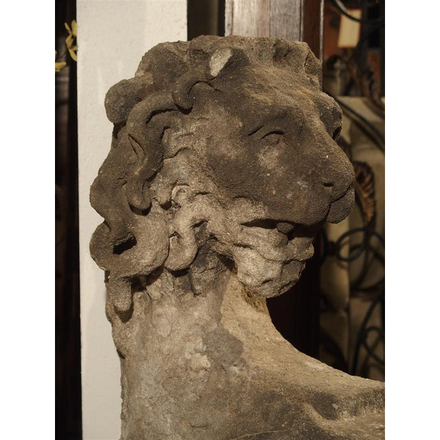 17th Century Beautiful Carved Limestone Lion Architectural, Burgundy France, 17th Century For Sale - Image 5 of 11