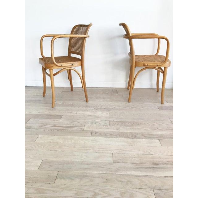 "Mid-Century Josef Hoffmann ""Prague"" 811 Cane & Bentwood Armchairs - Set of 10 - Image 7 of 11"