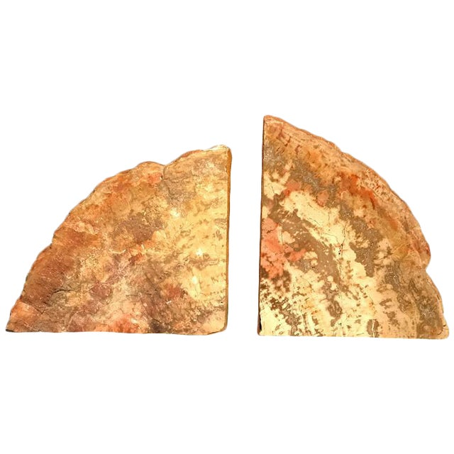 Brown Petrified Wood Bookends - a Pair For Sale - Image 8 of 8