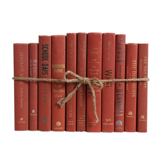 Modern Sienna ColorPak : Decorative Books in Shades of Reddish Brown For Sale