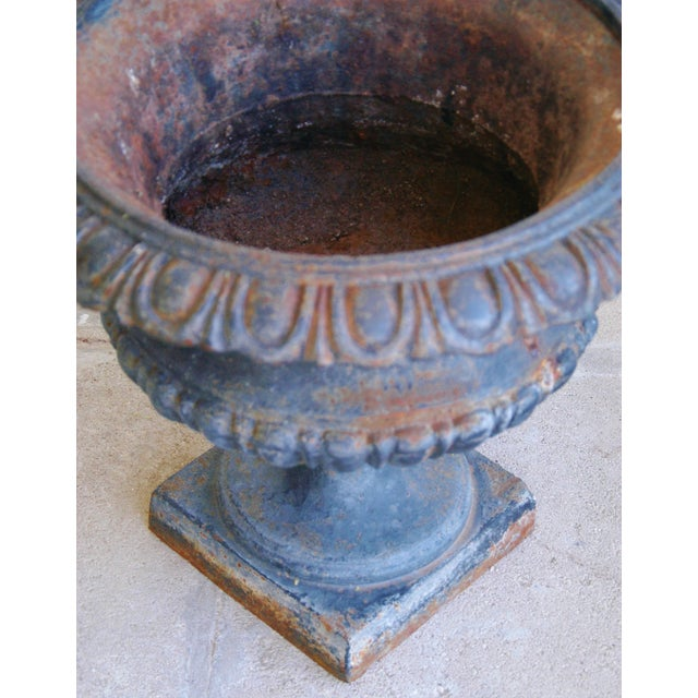 Early 19th-C. Cast Iron Urn Planters - Pair - Image 9 of 11